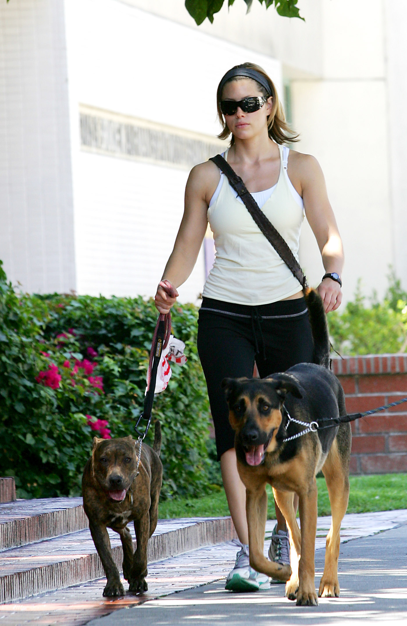 85051_Jessica_Biel_and_a_friend_walk_their_dogs_together_in_Los_Angeles_06_122_557lo.jpg
