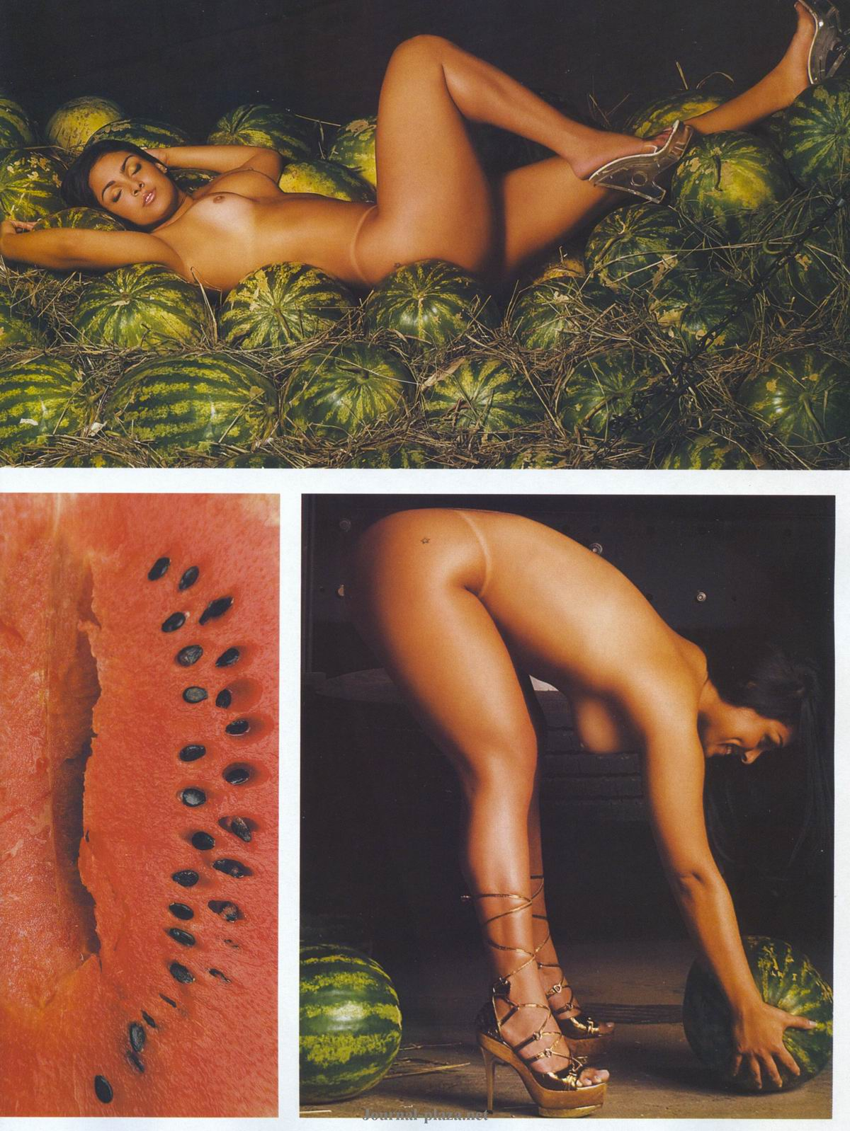 85863_Playboy_2008_10_-_89_122_1165lo.jpg