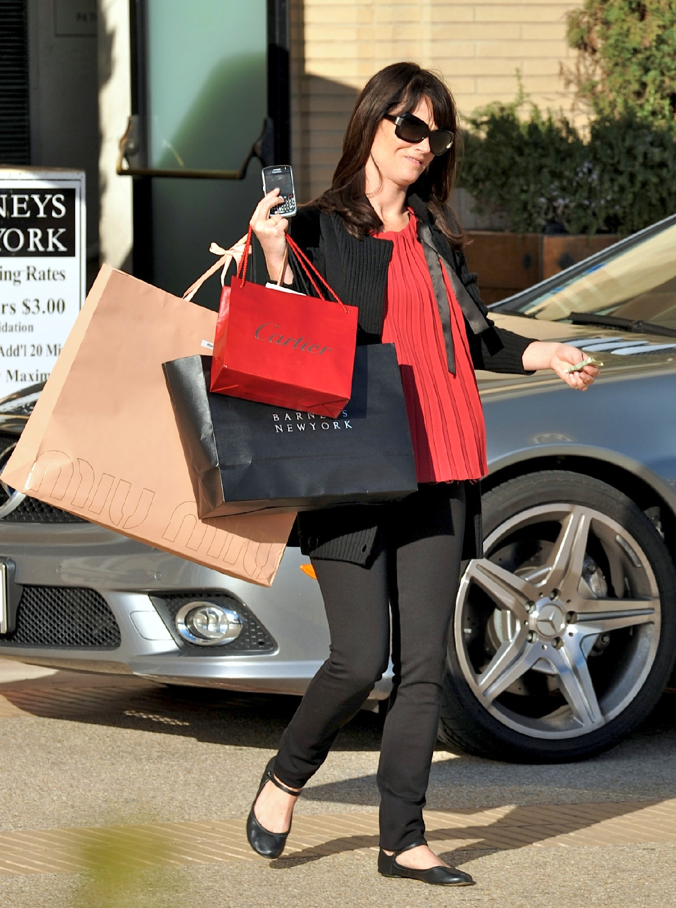 57304_Preppie_-_Robin_Tunney_carries_Cartier_and_Barney5s_bags_back_to_her_car_-_Jan._24_2010_422_122_414lo.jpg