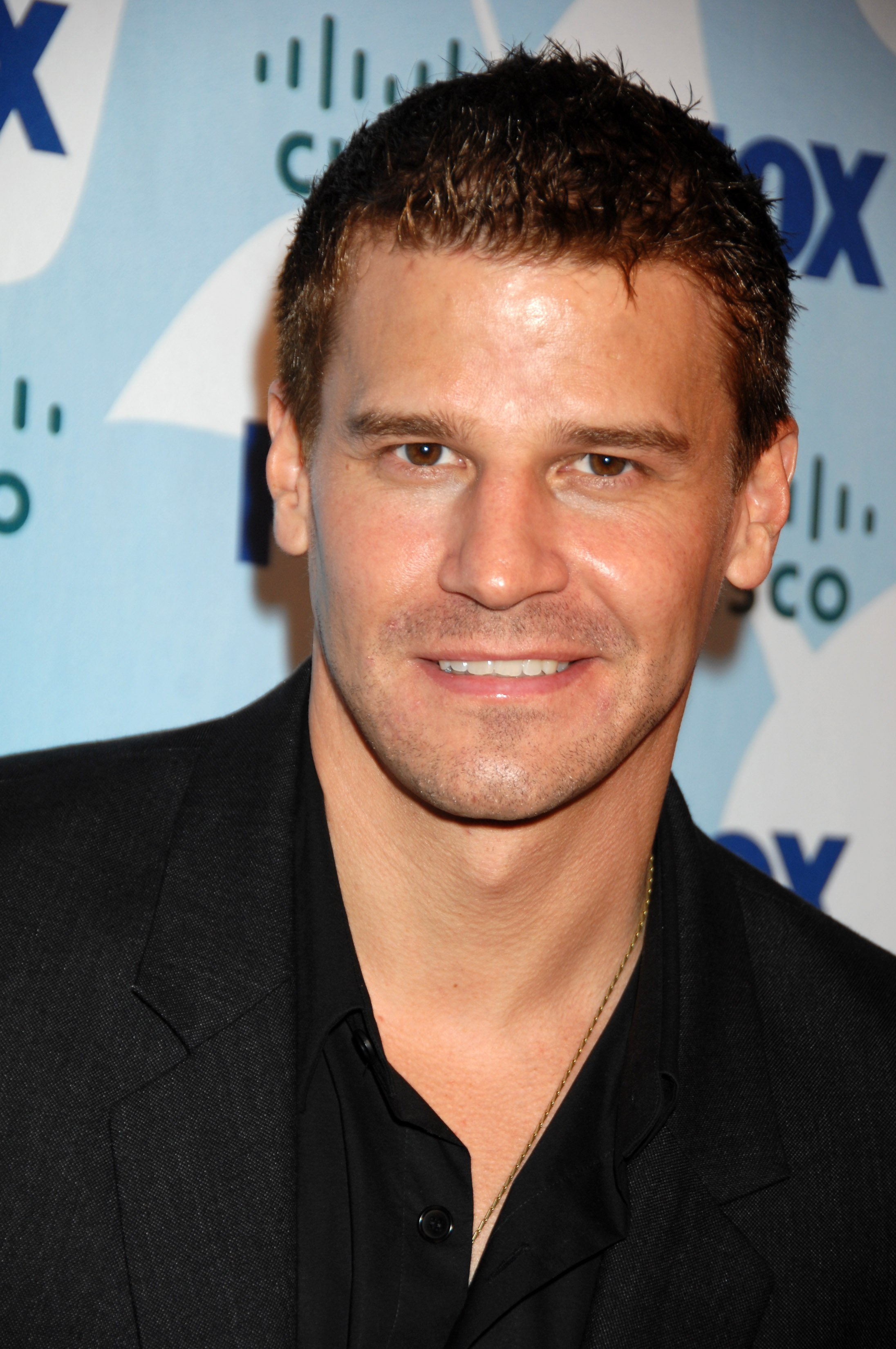 88241_David_Boreanaz_-_Fox_Fall_Eco-Casino_party_CU_ISA_0001_122_1079lo.jpg