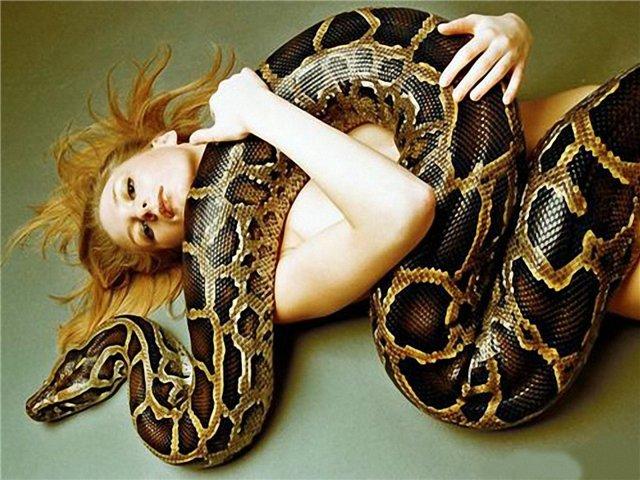 637886441_Snake_123_448lo.jpg