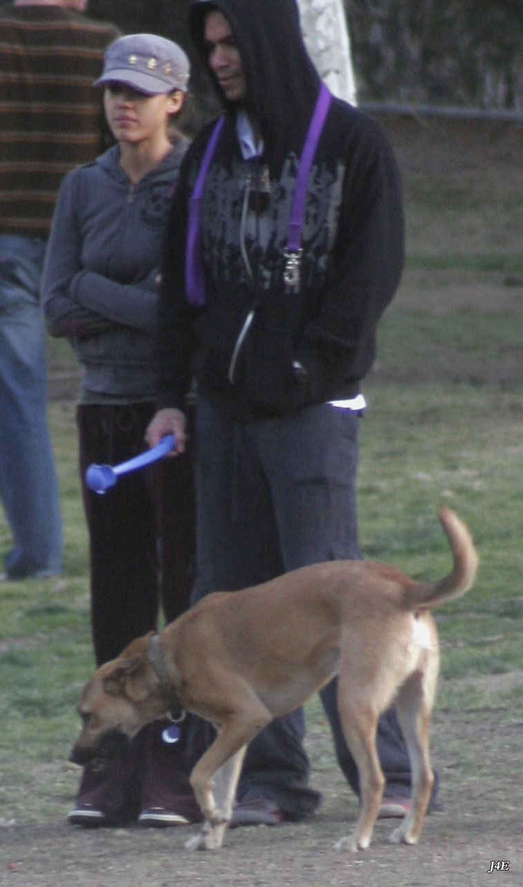 89595_Jessica_Alba_goes_to_the_dog_park_in_Beverly_Hills_Jan._20_005_123_430lo.jpg
