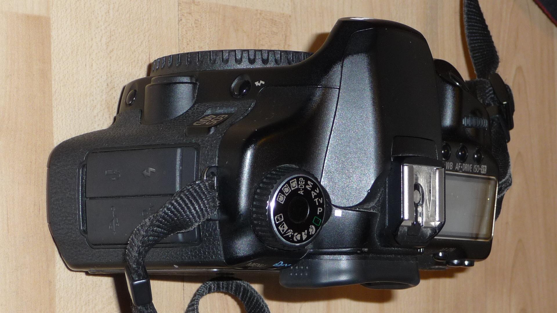 54433_Canon40D-4_122_554lo.JPG