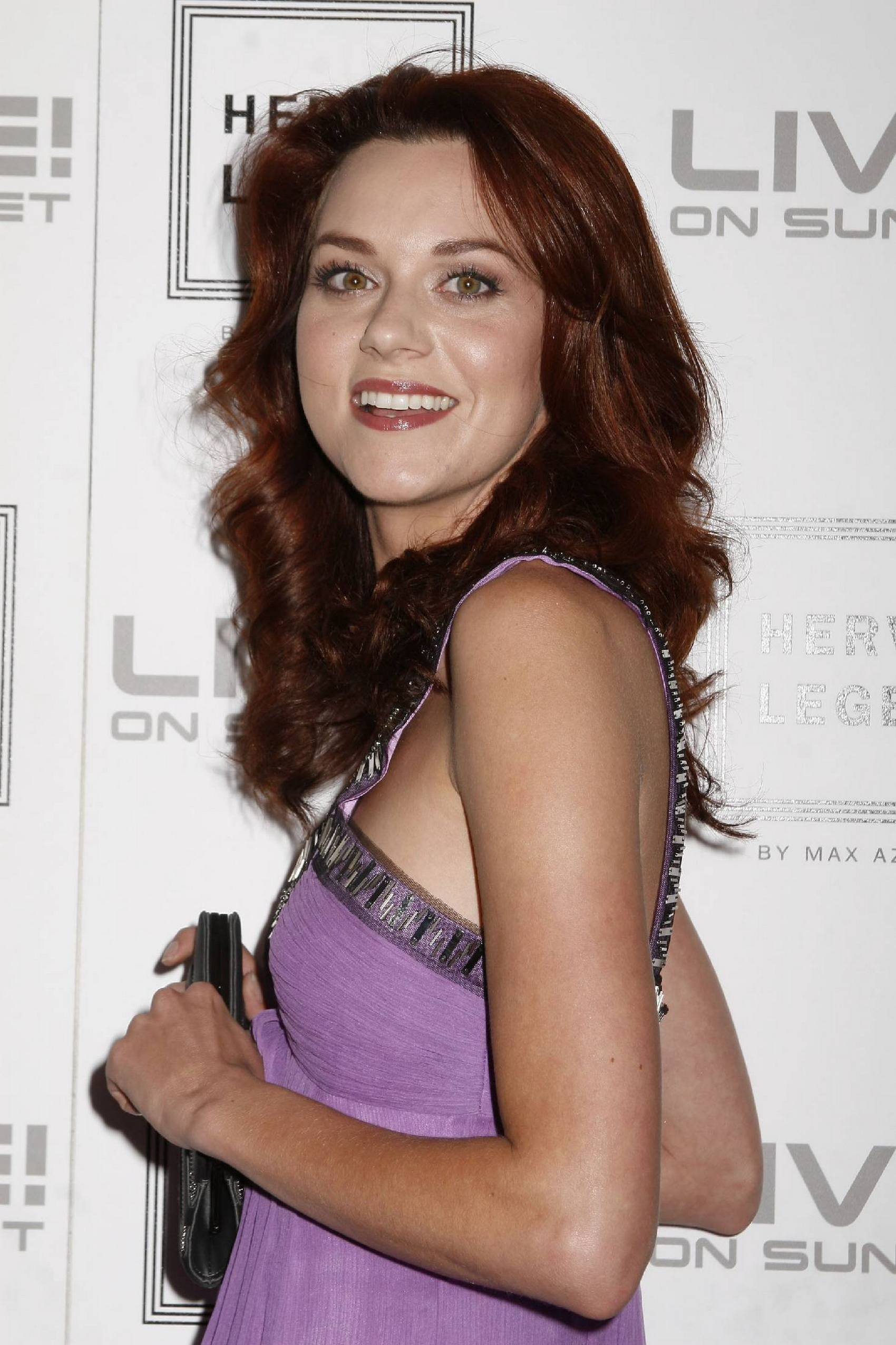 73596_Hilarie_Burton_at_Herve_Leger_by_Max_Azria_Celebration4_122_115lo.jpg