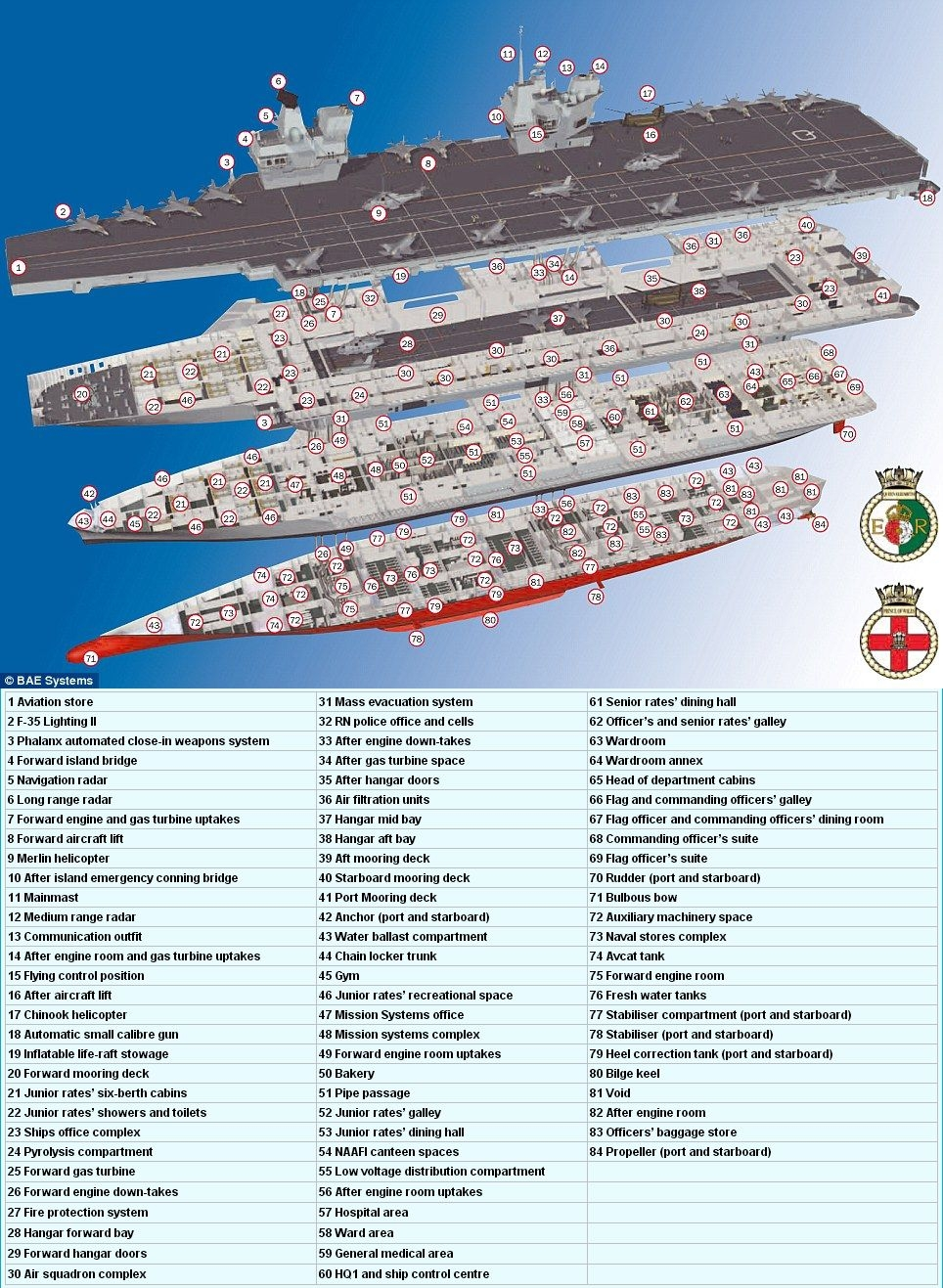 562864127_HMS_Queen_Elizabeth_aircraft_carrier_plan_122_380lo.JPG