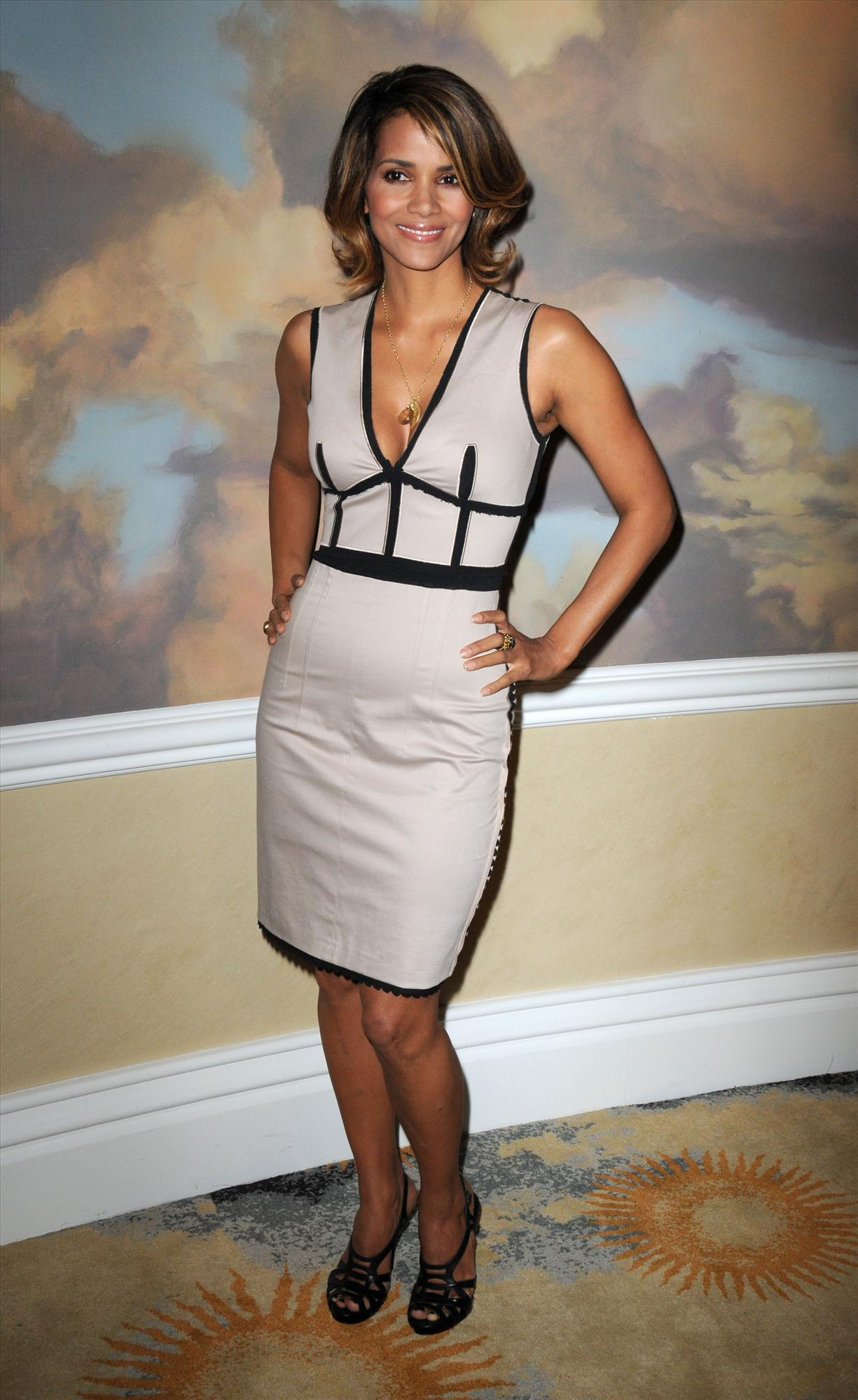 61982_Halle_Berry_2009_Jenesse_Silver_Rose_Gala_Auction_in_Beverly_Hills_01_122_157lo.jpg