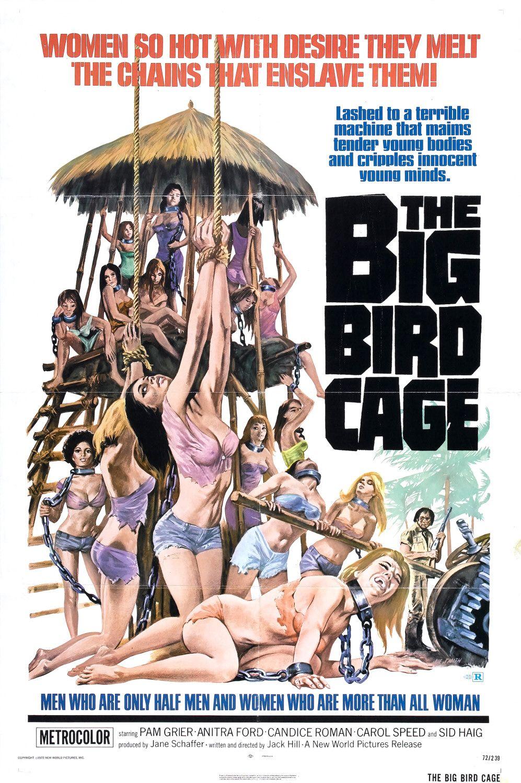 14810_big_bird_cage_xlg_122_401lo.jpg