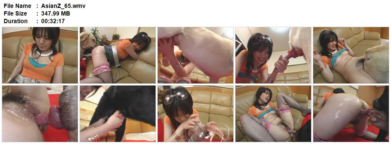 178613990_AsianZ_65.wmv_123_60lo.jpg