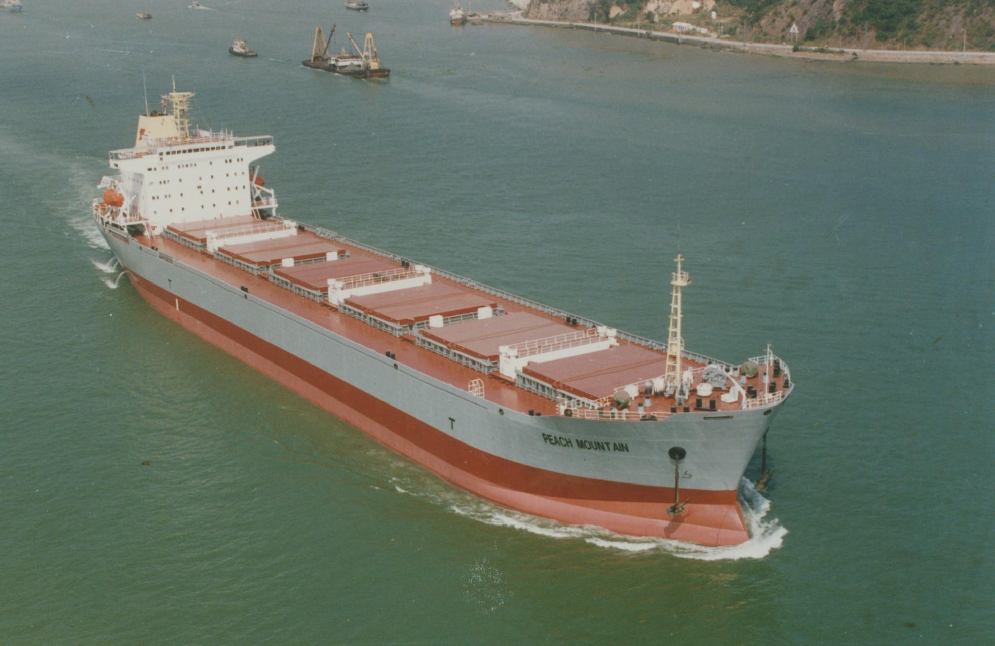 77133_40255_dwt_bulk_carrier_122_790lo.jpg