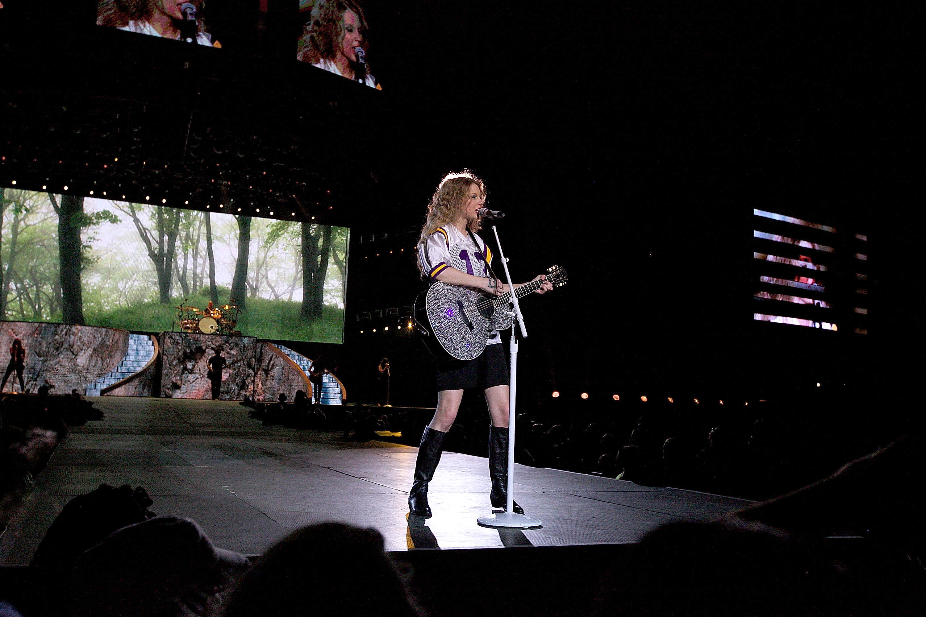 32749_Taylor_swift_performs_her_Fearless_Tour_at_Tiger_Stadium_053_122_989lo.jpg