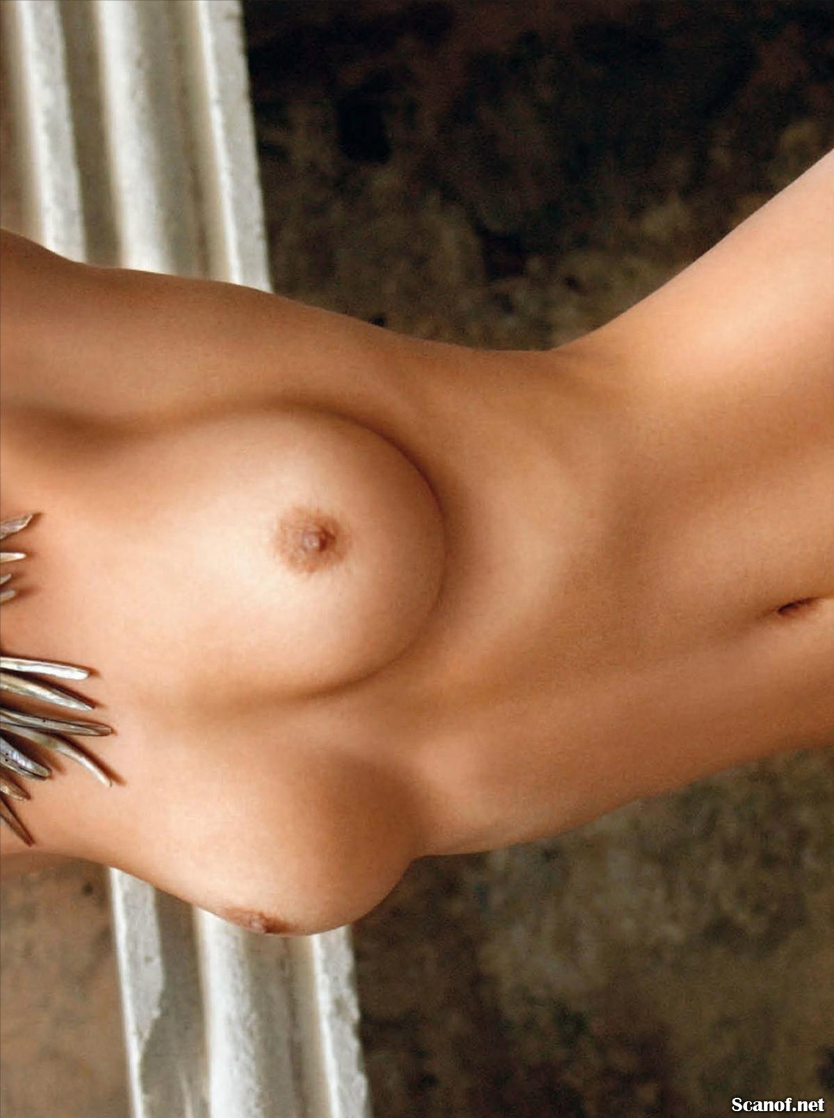 437597816_Playboy_2013_08_Czech_Scanof.net_068_123_91lo.jpg
