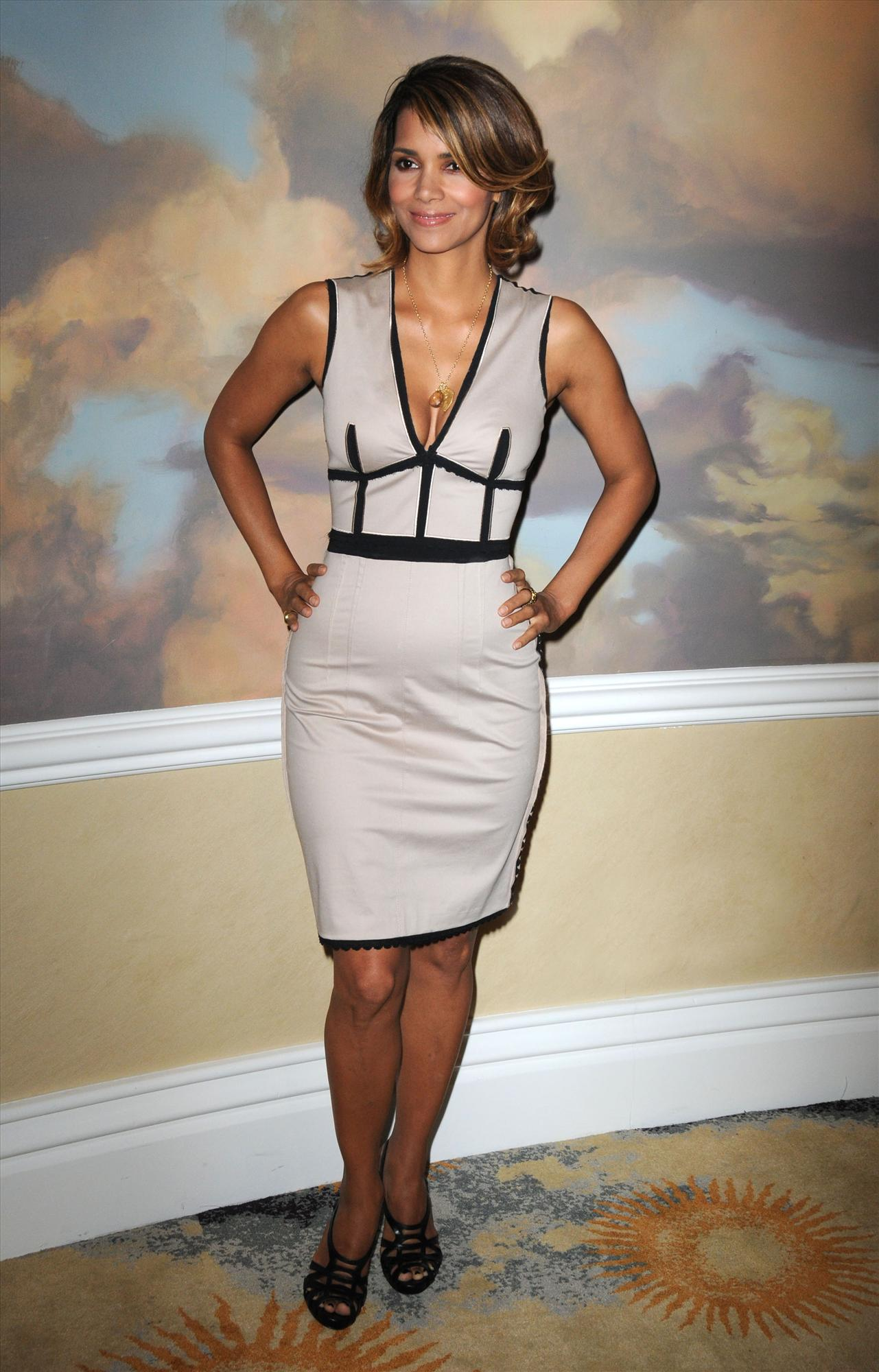 58590_Halle_Berry_2009_Jenesse_Silver_Rose_Gala_Auction_in_Beverly_Hills_05_122_530lo.jpg