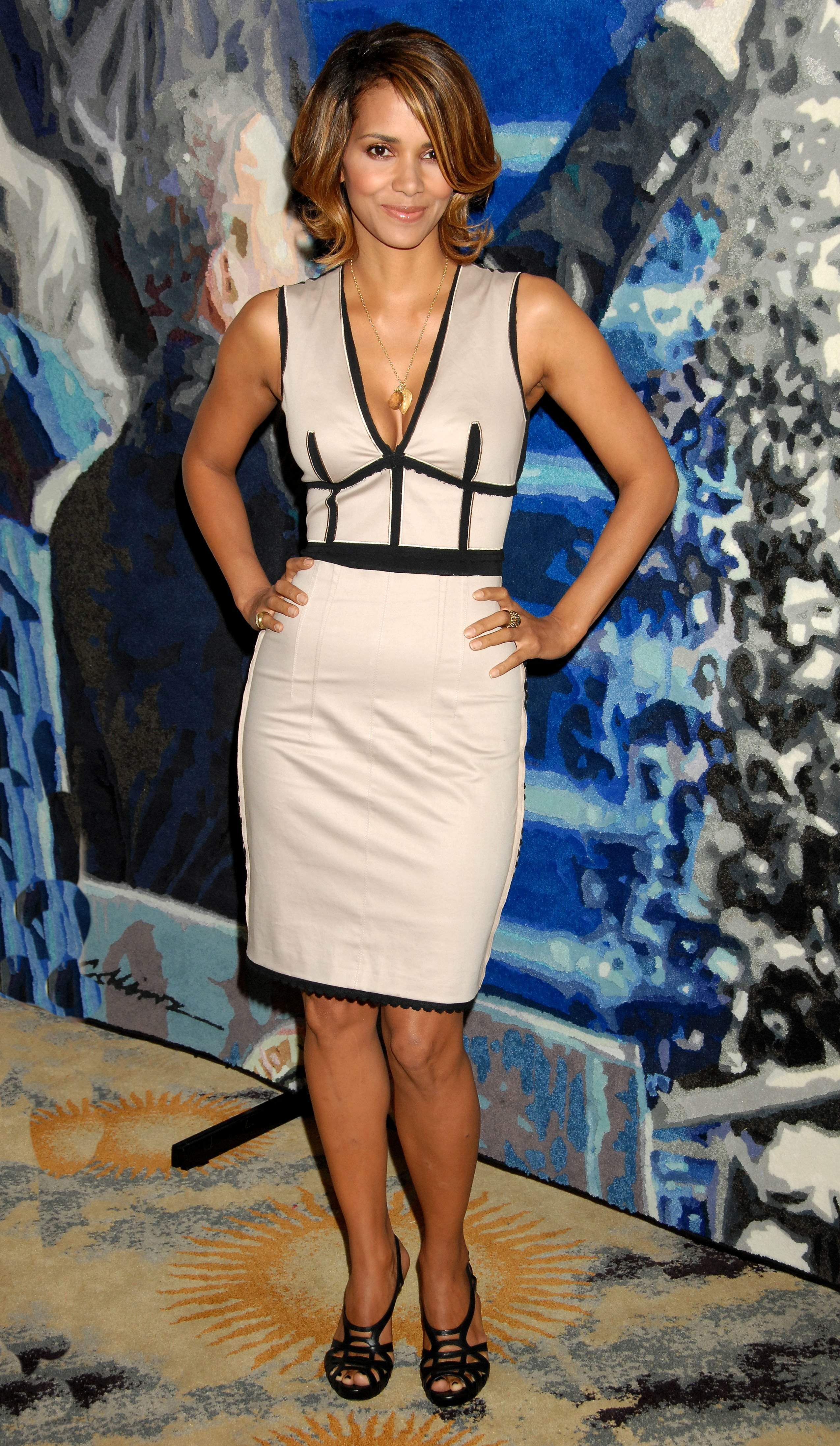 60691_Halle_Berry_2009_Jenesse_Silver_Rose_Gala_Auction_in_Beverly_Hills_91_122_904lo.jpg